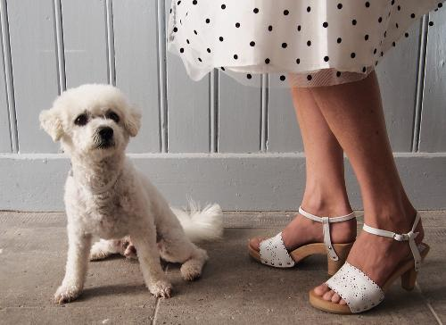 dogsandshoes18.jpg